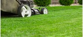 3 Tips to Buying a Petrol Lawnmower
