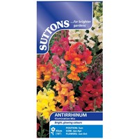 Suttons  Antirrhinum Illumination Mix Flower Seeds